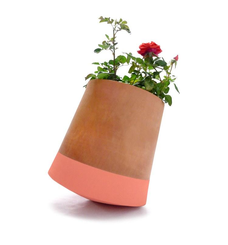 Voltasol roser