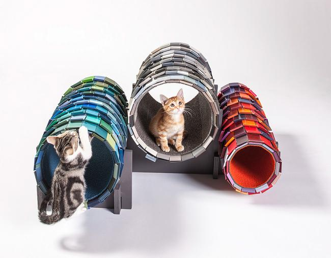 img-architects-animals-fixnation-chat-animaux-maison-architecture-00