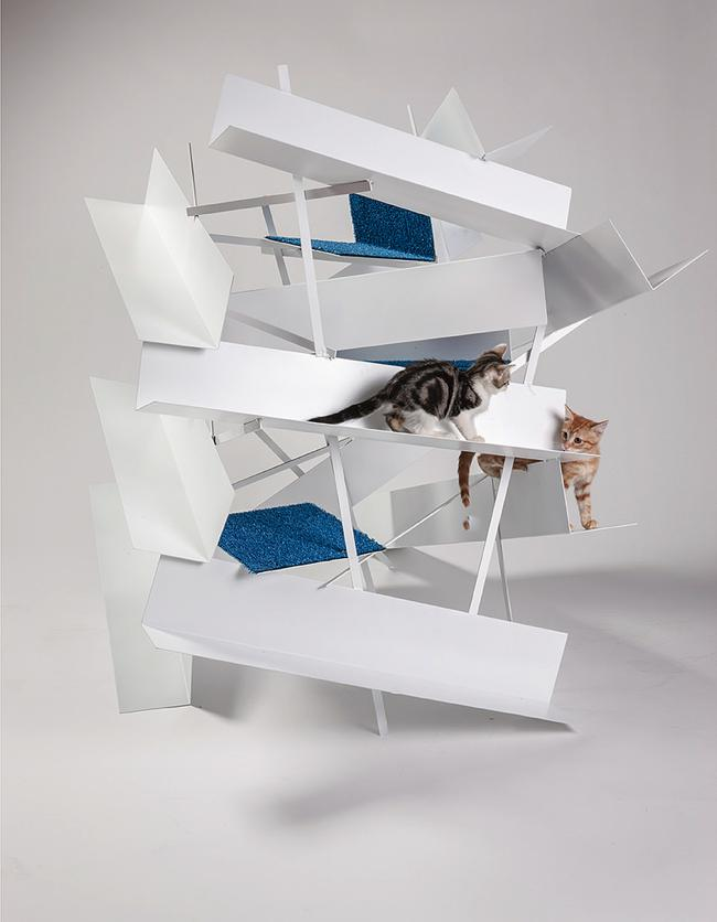 img-architects-animals-fixnation-chat-animaux-maison-architecture-01