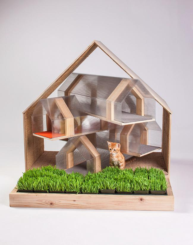 img-architects-animals-fixnation-chat-animaux-maison-architecture-12