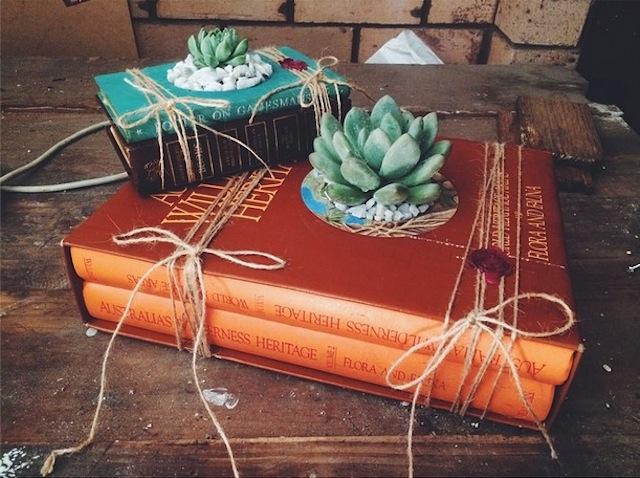 succulent-growingbooks-5