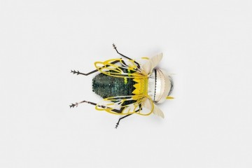 img-Recycled-Paper-Insects-4