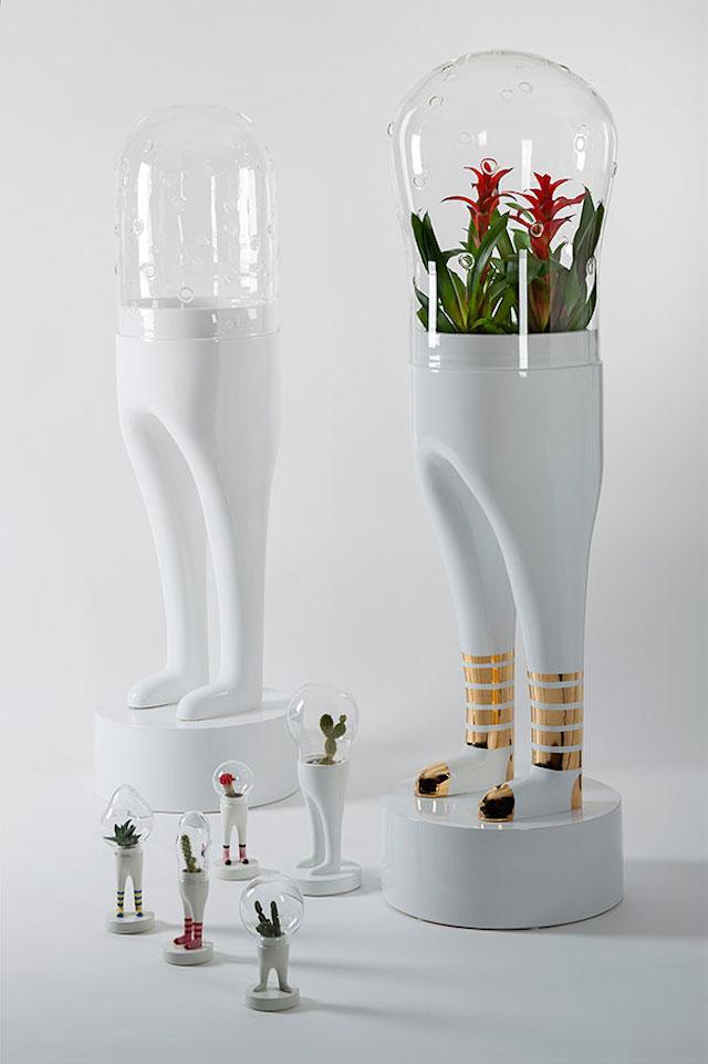 terrarium-cool