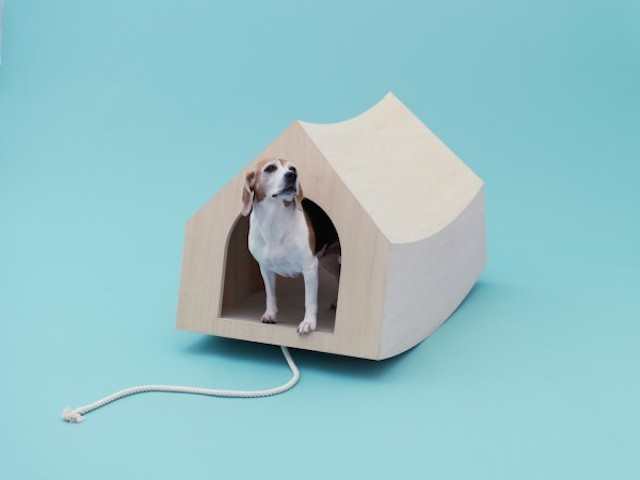 Playful-Puppy-Shelters-4