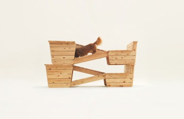 Playful-Puppy-Shelters-5