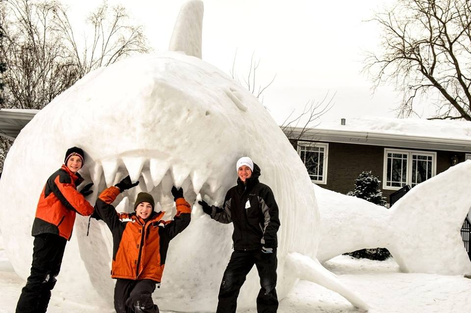sculptures_bartz_requin
