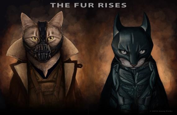 3_1_11_quand-les-chats-jouent-super-heros-batman-bane