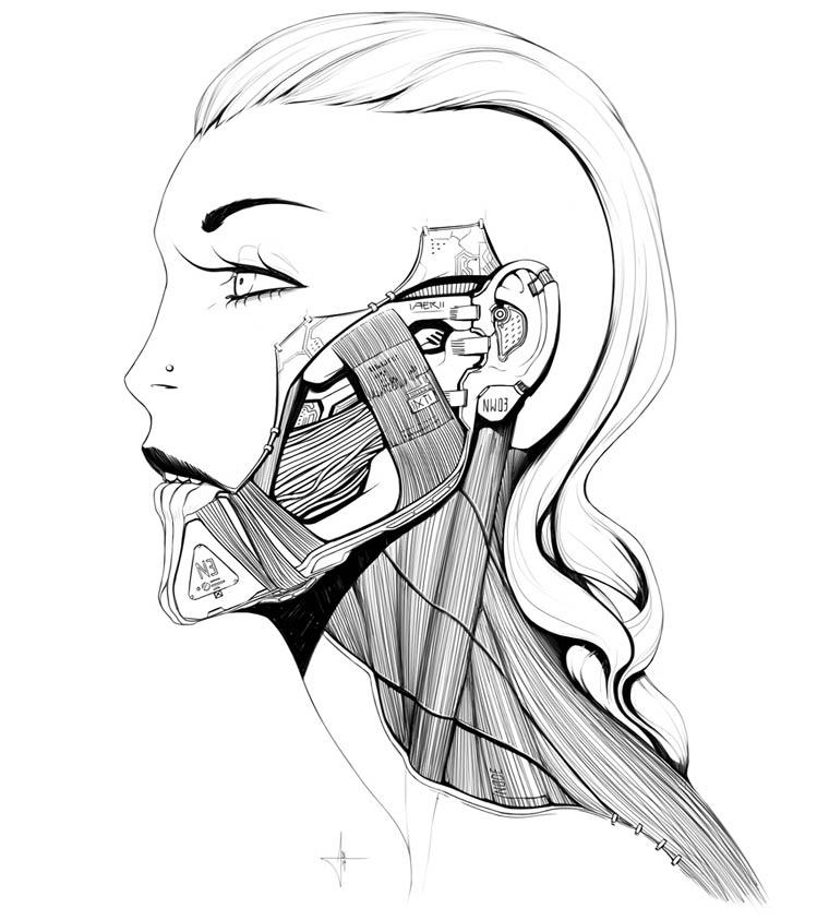 Adrian-Dadich-illustration-15