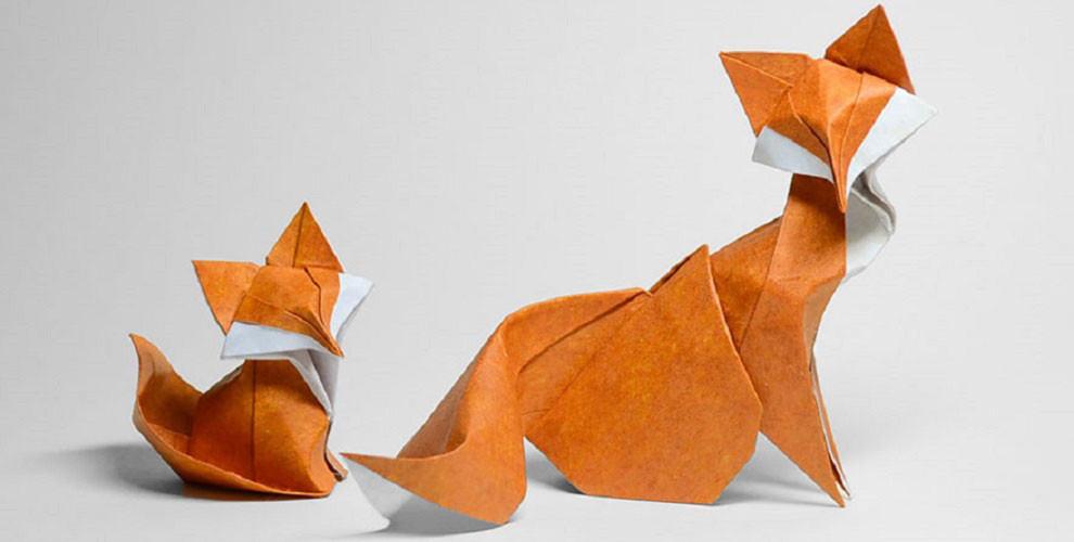 origami-animal-plie-courbes-papier-01