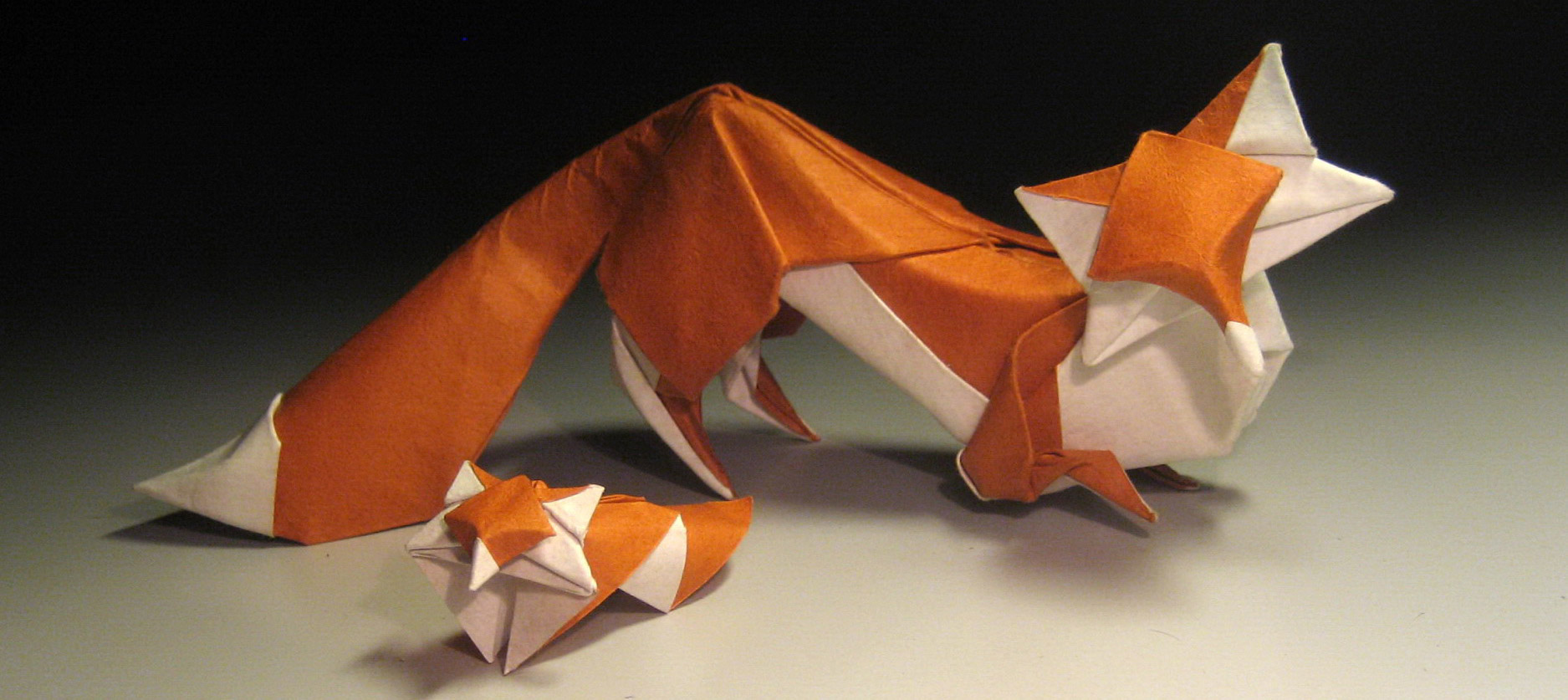 origami-animal-plie-courbes-papier-home