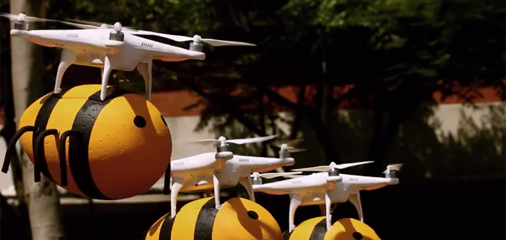 droneabeille