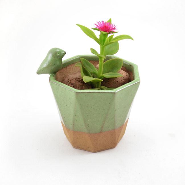 pots_animaux_plantes_01