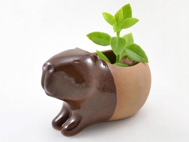 pots_animaux_plantes_03