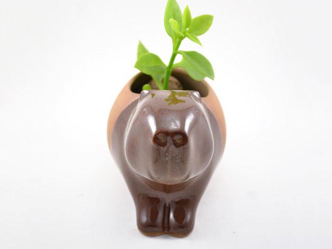 pots_animaux_plantes_05