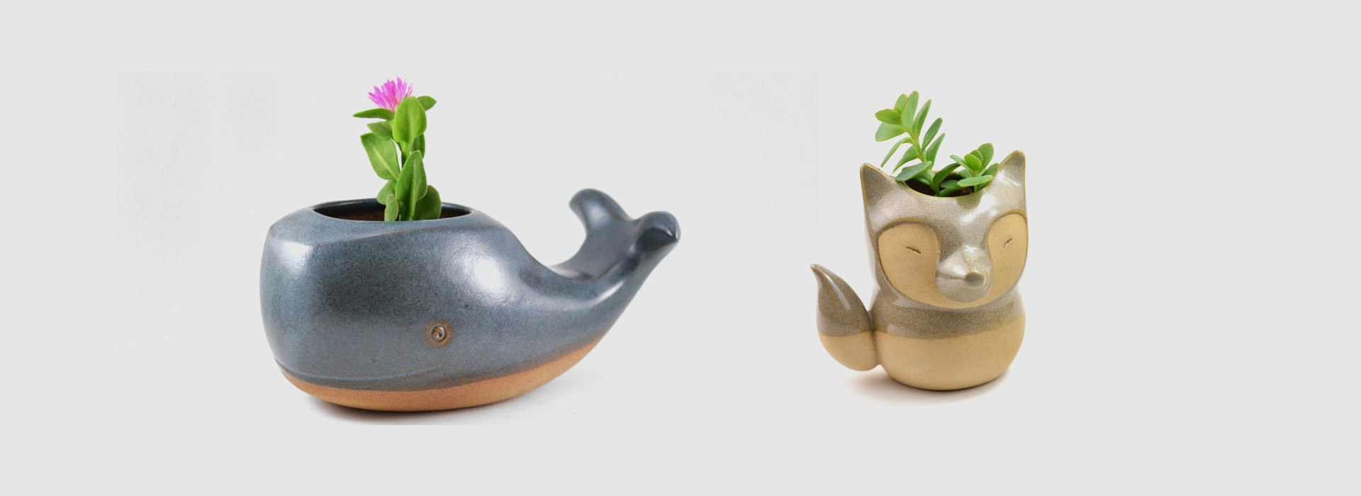 pots_animaux_plantes_home