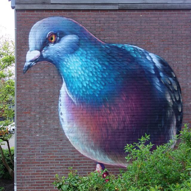 pigeons_peinture_rue_hollande_02