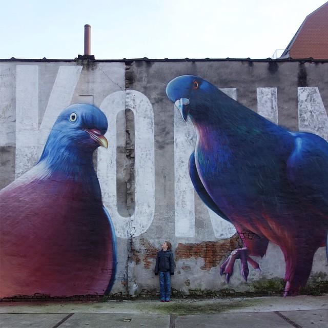 pigeons_peinture_rue_hollande_03