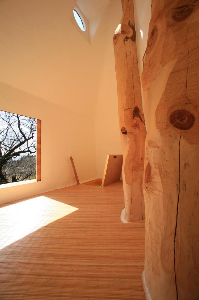 Treehouse23