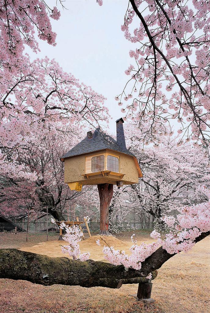 treehouse12