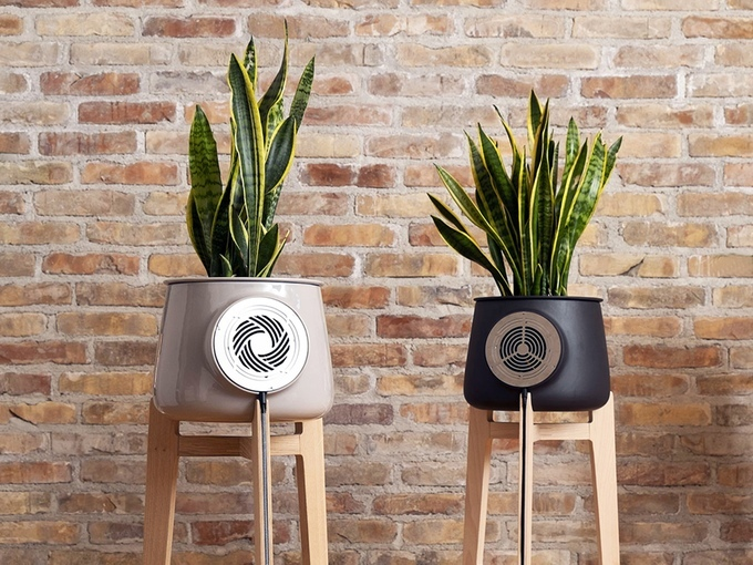 clairy purificateur d'air plante design kickstarter 01