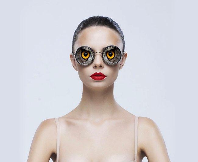 lunettesanimal001