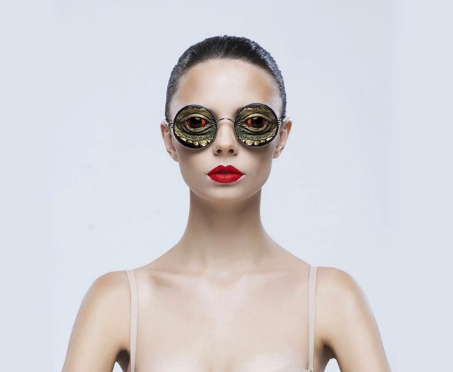 lunettesanimal02