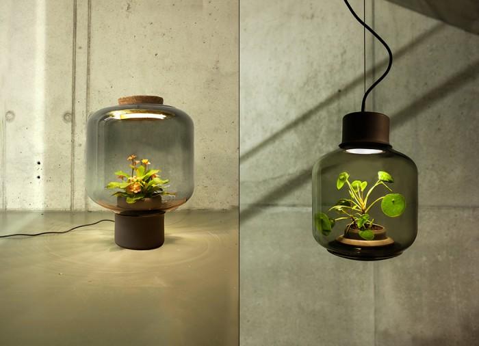 plantlamp