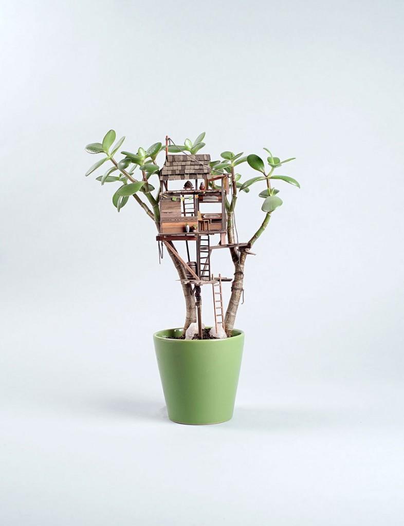 maison miniature plantes intérieure 01