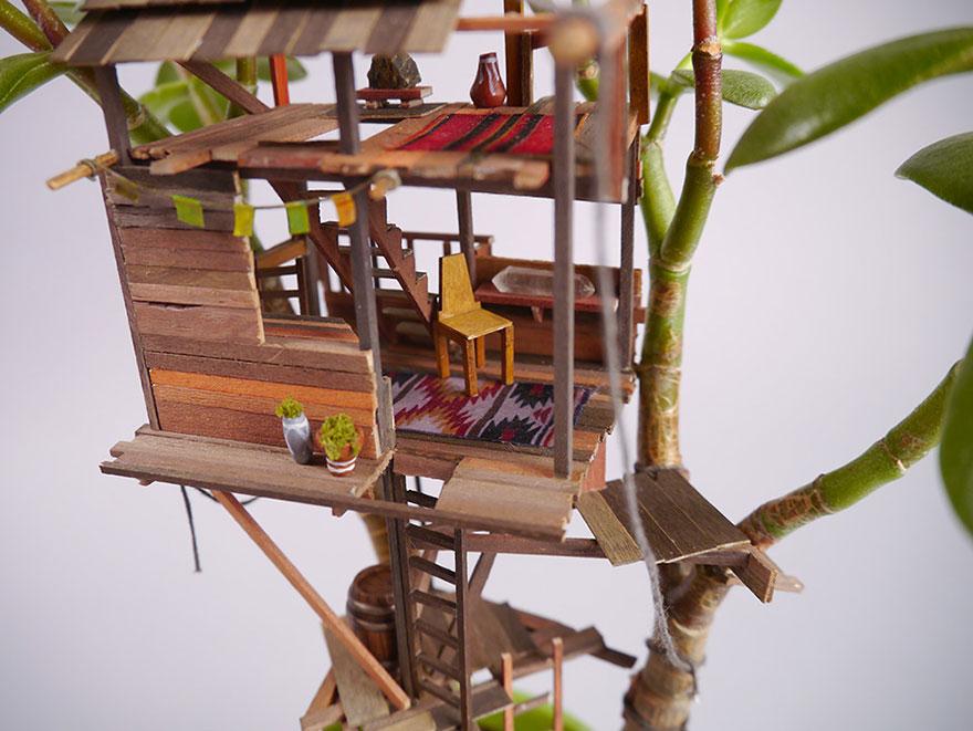 maison miniature plantes intérieure 02
