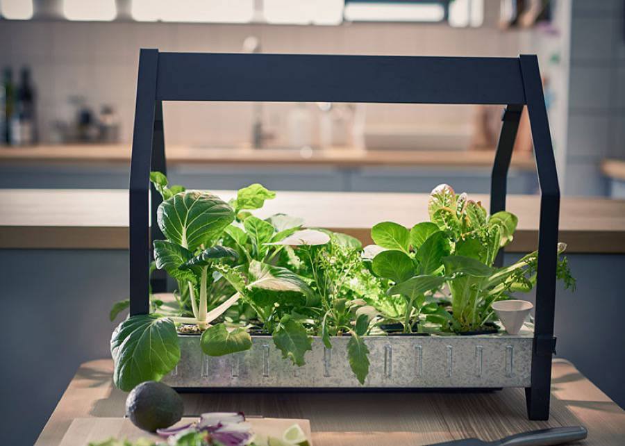 ikea indoor garden le jardin sans quitter la maison. Black Bedroom Furniture Sets. Home Design Ideas