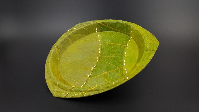 Leaf09