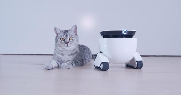 robotmiiing